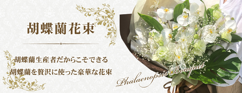 胡蝶蘭花束
